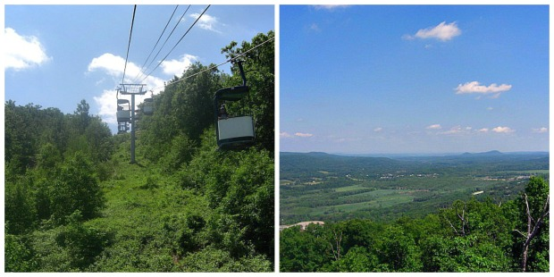 Zipline collage 2